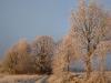schweden_winter14
